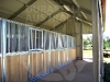 inline-stables-in-open-front-shed