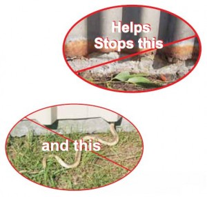 vermaseal vermin seal stops vermin and corrosion in sheds