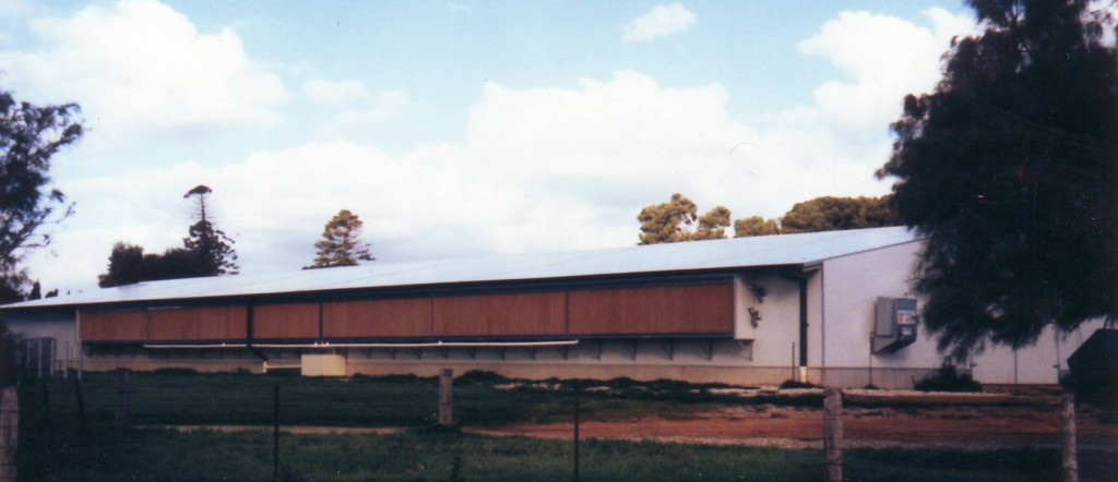 large poultry chicken shed finance agribusiness building