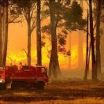bushfire wildfire non combustible guards flashings
