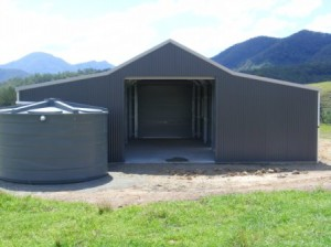 Verticle custom orb cladding woodland grey aussie barn shed
