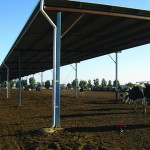 Shade shelter open sides dirt pad lot