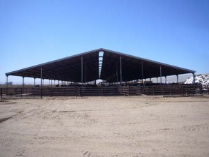 large open roof only free stall barn