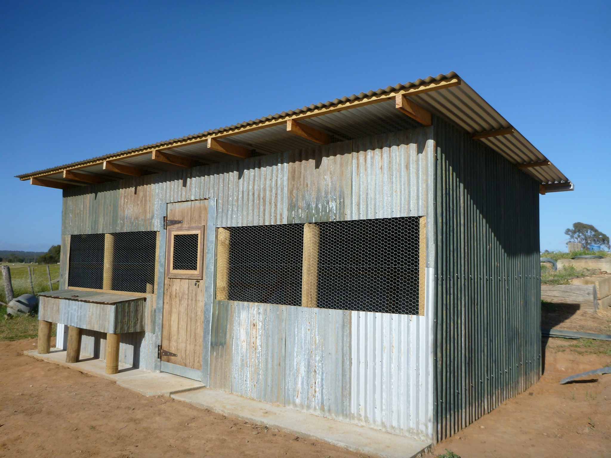 5 Solid Ways To Protect Chook Sheds And Bird Aviaries From Predators