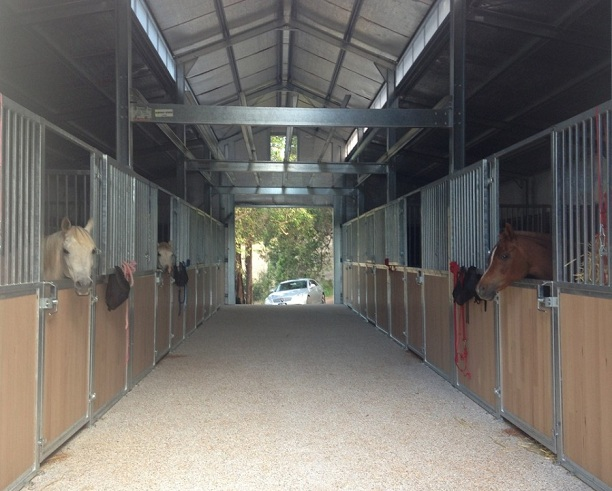Excellent New Stable Panels for Comfortable Boarding: A Great Treat for Your Horse