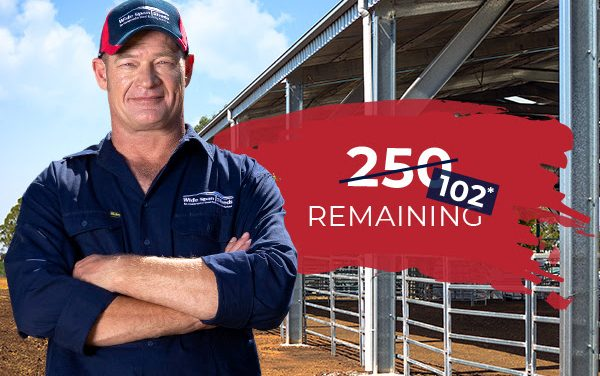 Wide Span Sheds Winter Special prices for up to 250 Sheds only