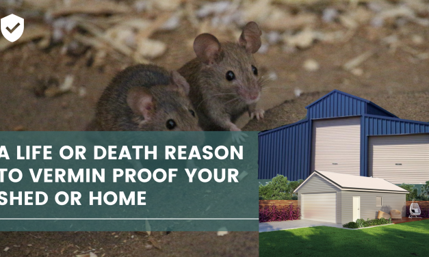 A Life or Death Reason to Vermin proof your Shed or Home